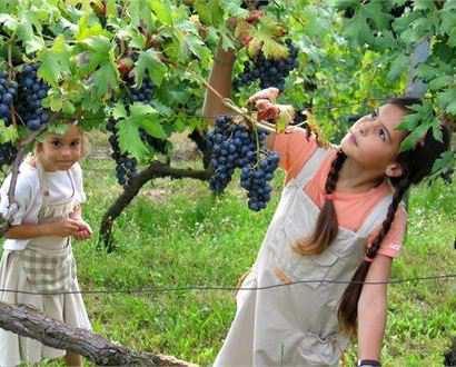 Festival dell'Uva a Levico Terme